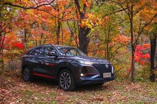 2019年11月紧凑型SUV销量排行榜 长安CS75PLUS销量大涨进前三