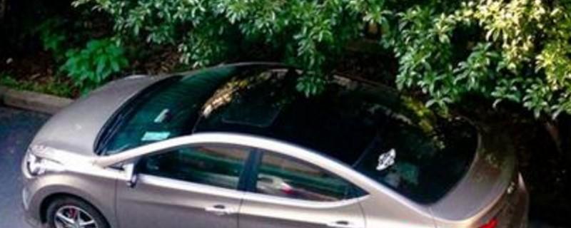 车顶贴膜需要备案吗