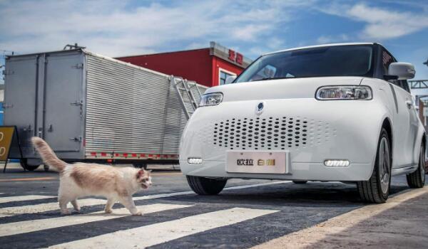 10万以下纯电动汽车排名 比亚迪元EV排名第一欧拉白猫上榜