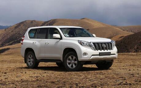 2021年1月大型SUV销量排行榜 丰田普拉多销量3072辆(冠军)